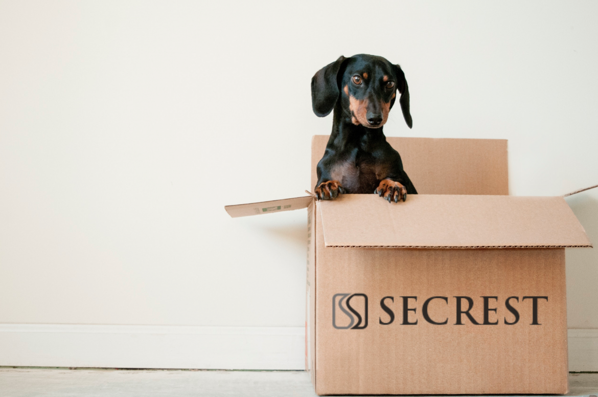 Considering a Move? Here Are Some Helpful Tips for Household Packing and Moving